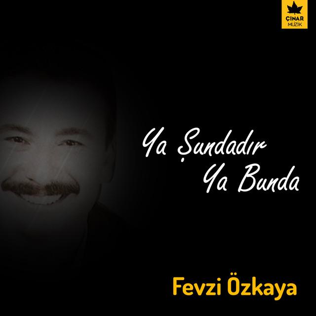 Fevzi Özkaya