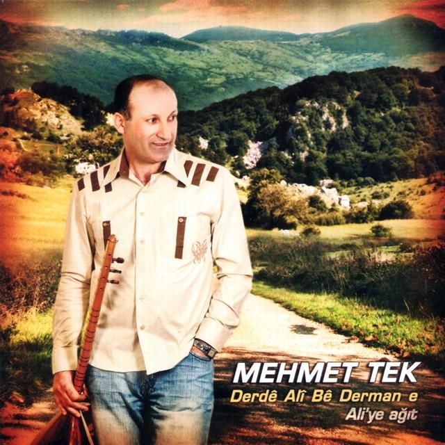 Mehmet Tek Şarkıları