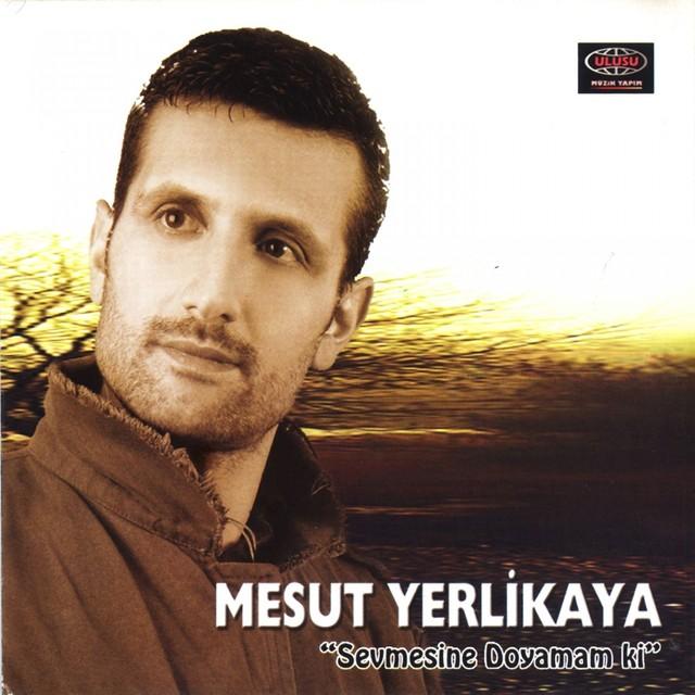 Mesut Yerlikaya
