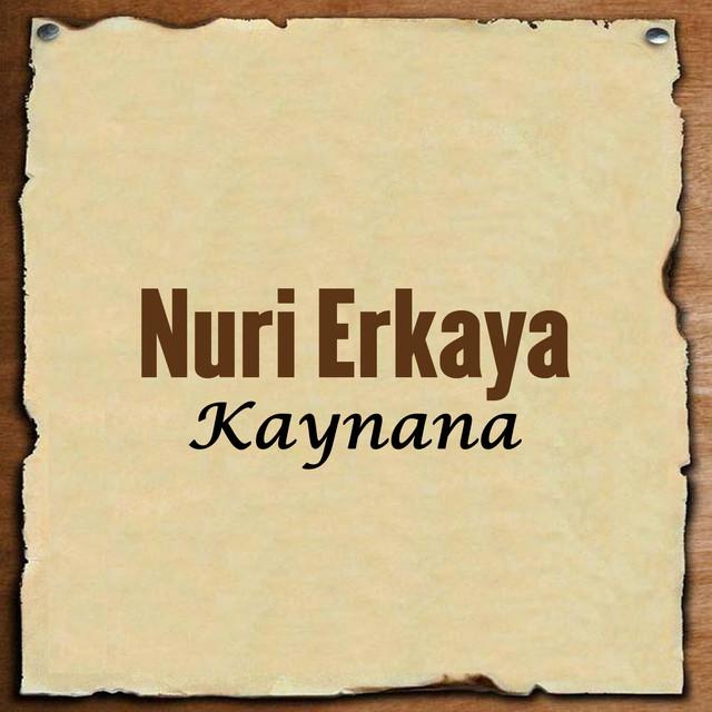 Nuri Erkaya