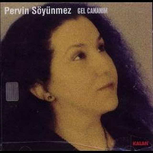 Pervin Acinik