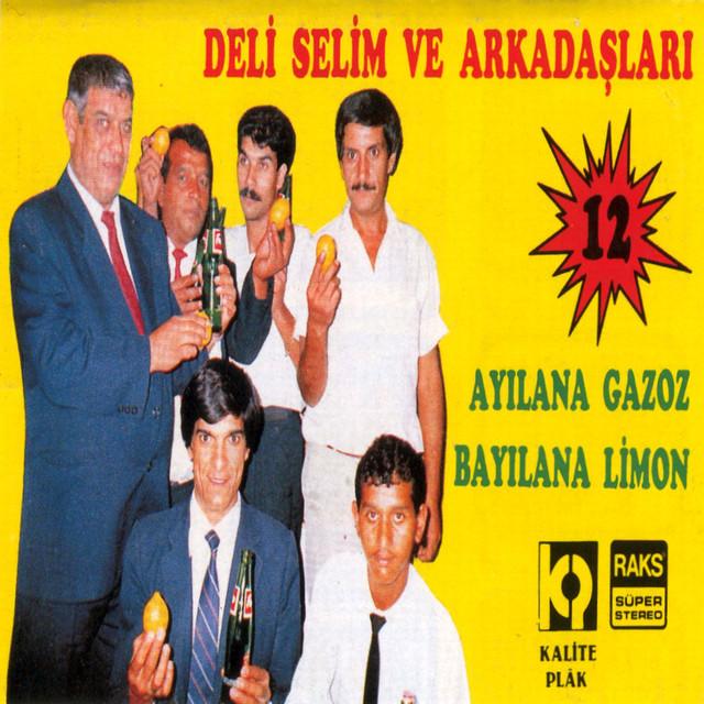 Selim Kızılcıklar