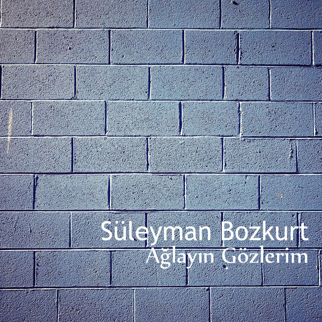 Süleyman Bozkurt