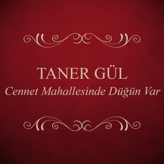 Taner Gül