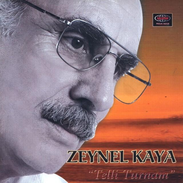 Zeynel Kaya