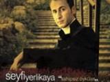 Seyfi Yerlikaya