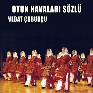 Vedat Çubukçu