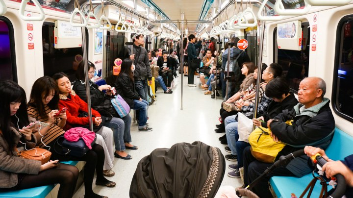 Metroda