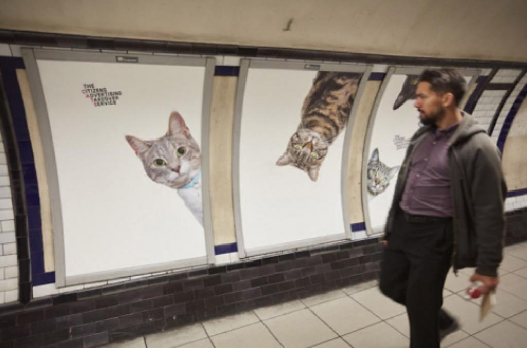 Dikkat! Londra'daki Bu İstasyonda Kediler Tarafından İzleniyorsunuz
