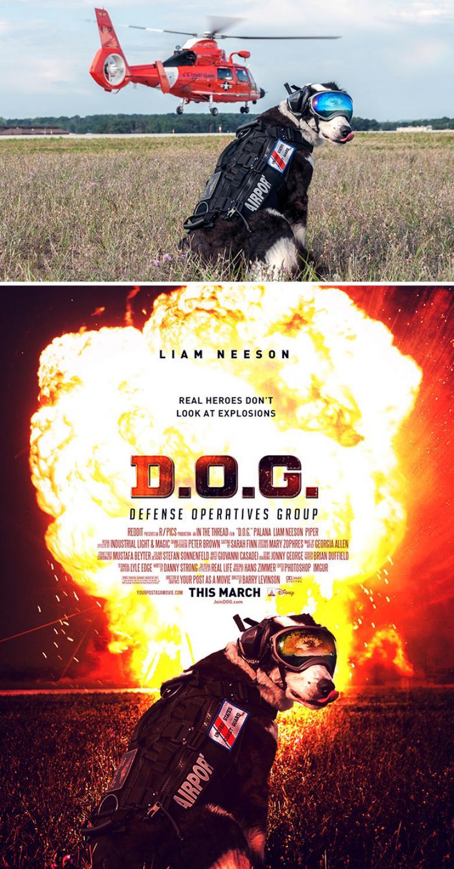 Film Afişi Yapılası Rastgele Çekilmiş Fotoğraflar