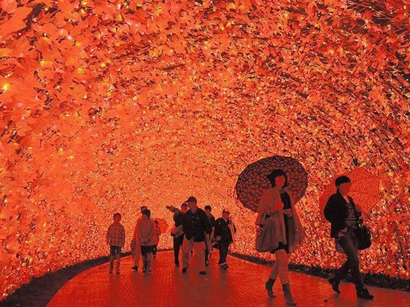 3 Milyon LED Işık Kullanılarak Yapılan Muhteşem Işık Tüneli: Japonya