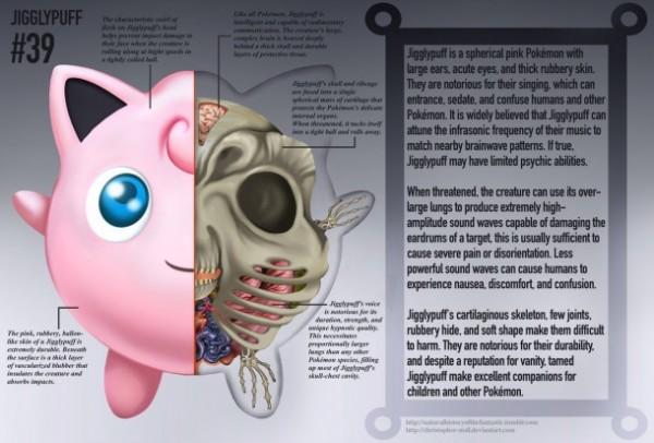 Pokemon'ların Anatomik Yapıları
