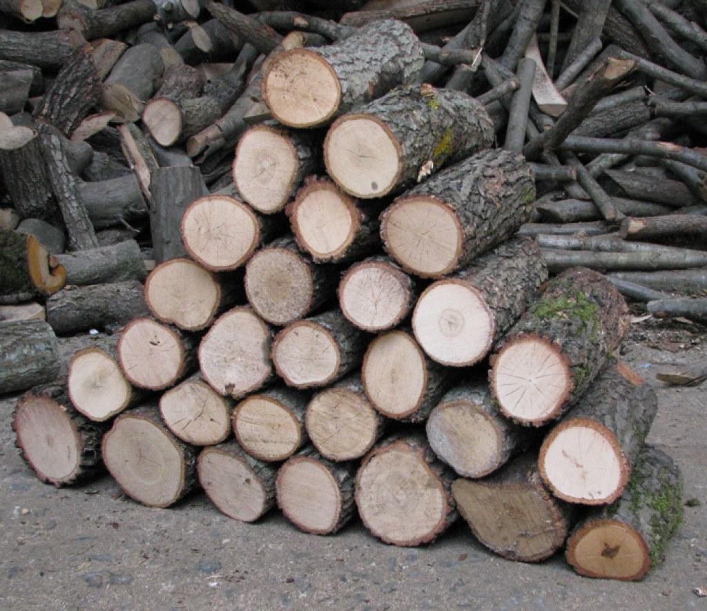 Sadece Odun İnsanların Anlayacağı Durumlar