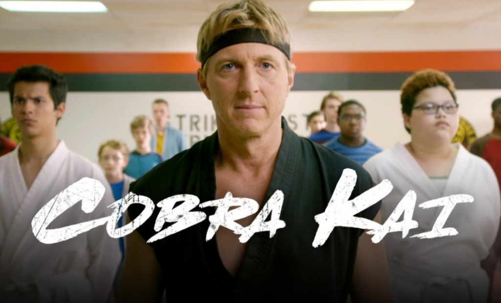 dizi,diziler, cobra kai, karate kid, dojo, youtube red
