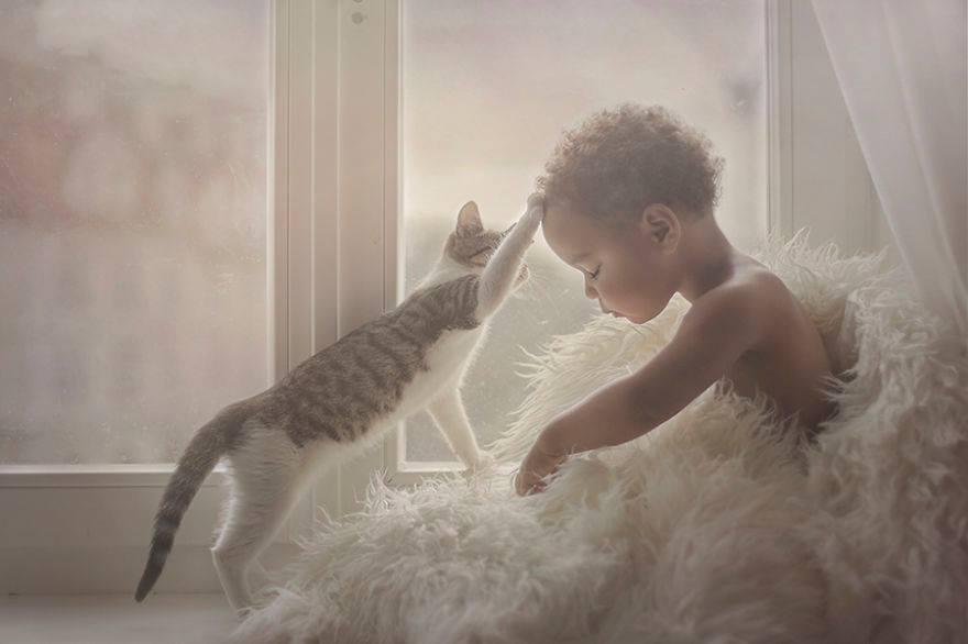 Çocuk ve Hayvanların Ortak Masumiyeti