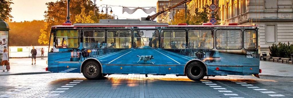 Sokak İle İç İçe Bir Otobüs
