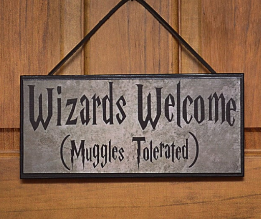 Görünce Hogwarts'a Kabul Mektubunuz Gelmişçesine Sevineceğiniz Harry Potter Temalı Fikirler