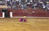 Boğayla Kafa Yapan Matador'un Muhteşem Sonu