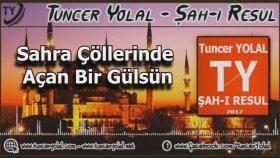 Tuncer Yolal - Şah-ı Resulsün ( ilahi )