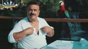Bülent Serttaş'ın Klibindeki Efkarlı Papağan