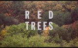 Red Trees (2017) Fragman