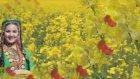 Vay Bee HD