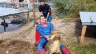 Timsah Yuvasına Süperman Kostümüyle Baskın Yapan Adam