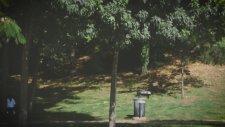 Uzun Boylu Bir Erkekle Beraber Olanların Bildiği 9 Durum