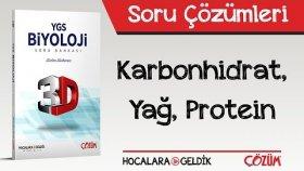 3d Soru Bankası - Karbonhidrat, Yağ, Protein Soru Çözümleri