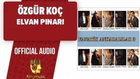 Ozgur Koc - Elvan Pınarı