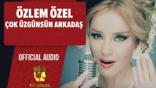 Özlem Özel - Çok Üzgünsün Arkadaş - ( Official Audio)
