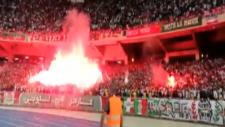 Cezayir takımı MC Alger taraftarından tribün şov!