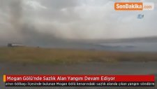Mogan Gölü'nde Sazlık Alan Yangını Devam Ediyor