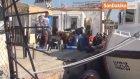 Ayvalık'ta 126 Göçmen Yakalandı
