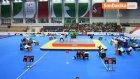 14. Dünya Büyükler Wushu Şampiyonası - Kazan