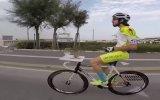 Bisiklet Sürerken Yemek Yiyen Sürücü
