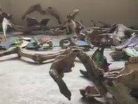Çöpleri Sanat Eserine Dönüştürmek - Etiyopya