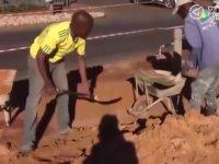 Afrikalı İşçilerin Kıvrak Zekası ve Çalışma Verimliliği