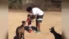 Marcelo ve ailesinin hayvanseverliği