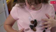 Hamam Böcekleri İle Beraber Yaşayan Shelby
