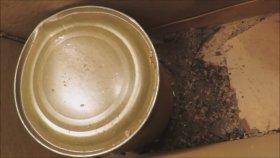 1971 Vietnam Savaşında Dağıtılan Konserveyi Yemek