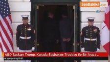ABD Başkanı Trump, Kanada Başbakanı Trudeau ile Bir Araya Geldi