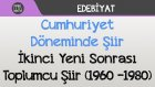 Cumhuriyet Döneminde Şiir - İkinci Yeni Sonrası Toplumcu Şiir (1960 –1980)