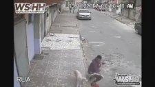Kaldırımda Oturan Adamın Sırtına Çişini Yapan Köpek
