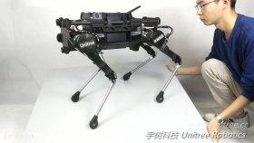 Dört Bacaklı Robot: Laikago