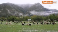 Doğu Karadeniz'de 2 Mevsim Bir Arada