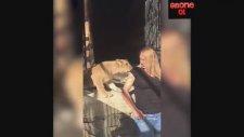 Nagihan Karadere'ye Yavru Aslan Saldırdı