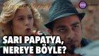 Hayat Şarkısı - Sarı Papatya, Nereye Böyle?