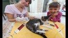 Kedicik Alina İçin Aşı Vakti, Eğlenceli Çocuk Videosu