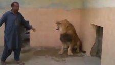Aslanlarla Kafa Bulan Yürek Yemiş Adam